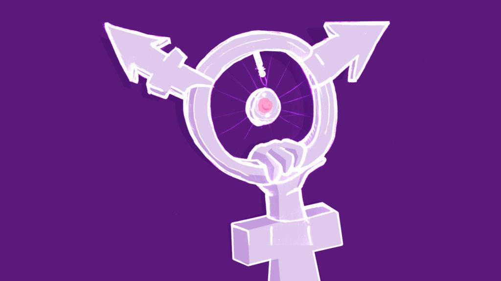 Roue féministe inclusive